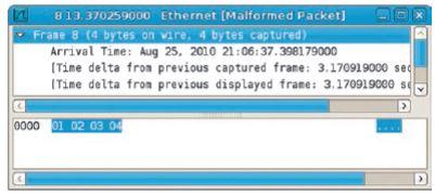 "Итог последовательно- сти ""echo '01 02 03 04'|hexinject -p -i eth0"""
