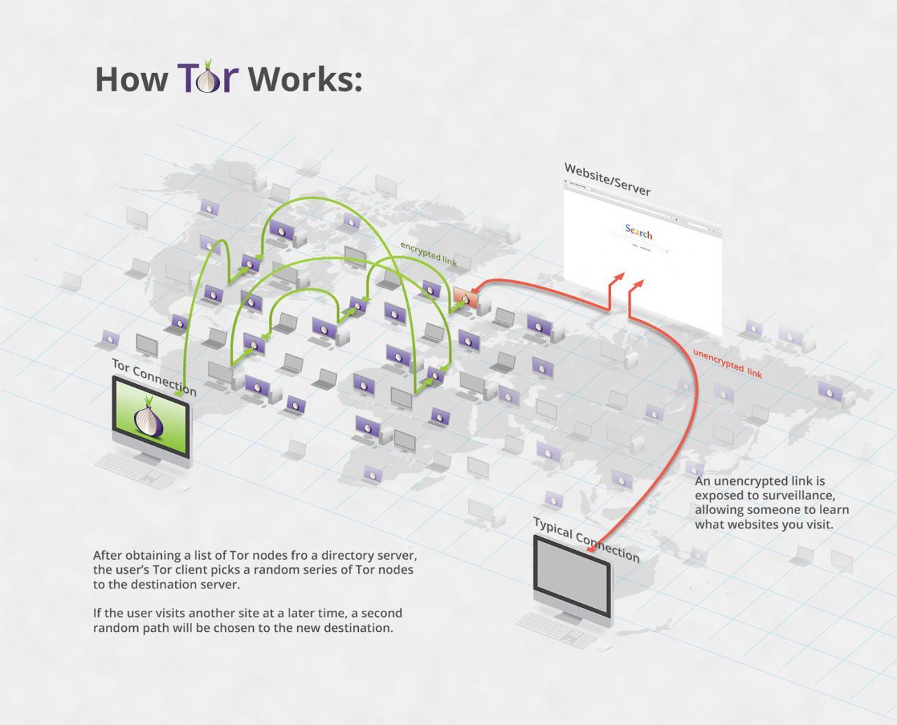 схема работы TOR сети