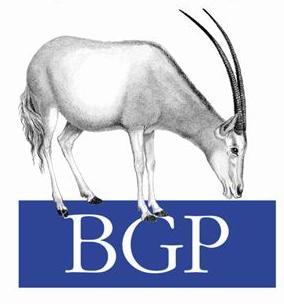 Перехват трафика с помощью подмены BGP сессий.