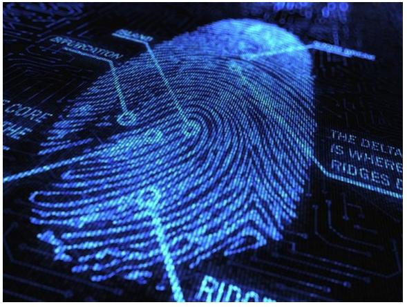 Как обмануть сканер отпечатков пальцев на телефоне.