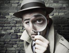 Как найти хозяина сайта и все что с ним связано!