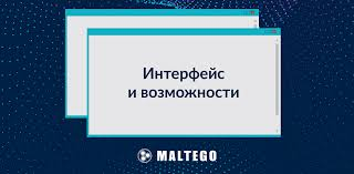 Функционал принцип работы и возможности Maltego