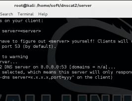 Как организовать DNS-tunneling