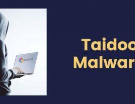 Как эффективно работать с Taidoor