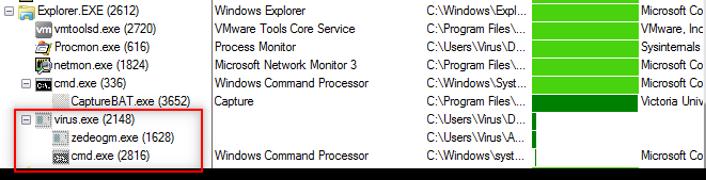 Process Explorer отображает процессы, созданные файлом virus.exe