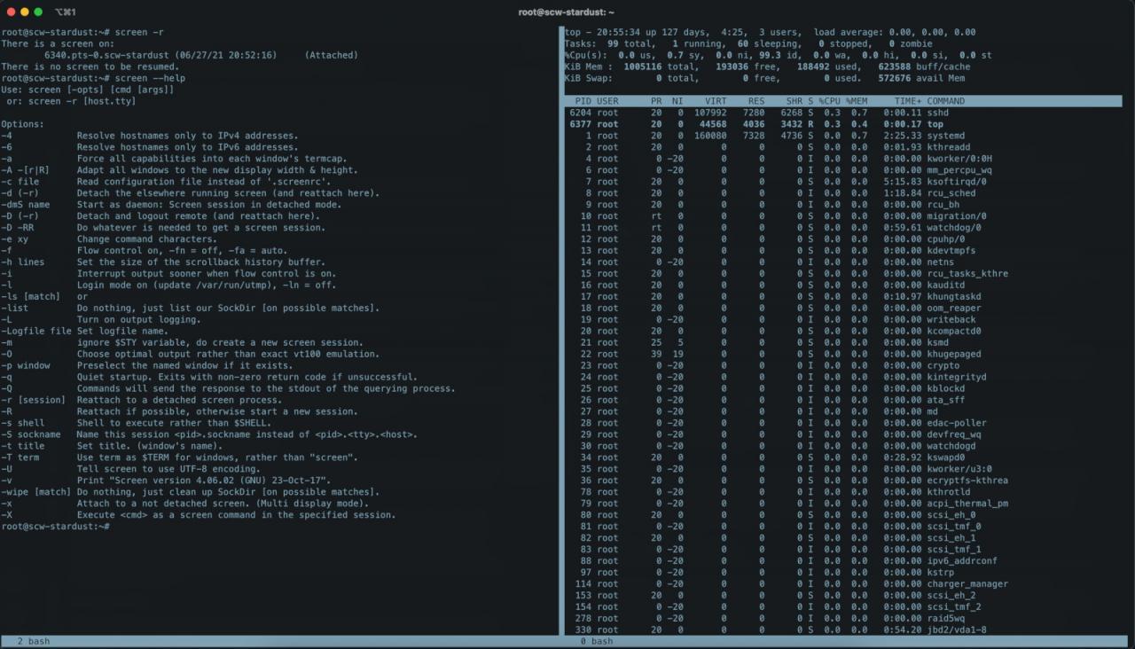 Screen позволяет запускать множество терминалов в рамках одной SSH-сессии. Ускоряем работу в DevOps